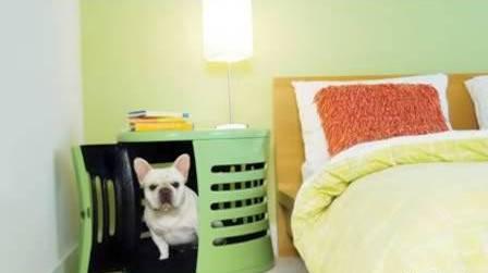 几种既美观又实用的宠物家具