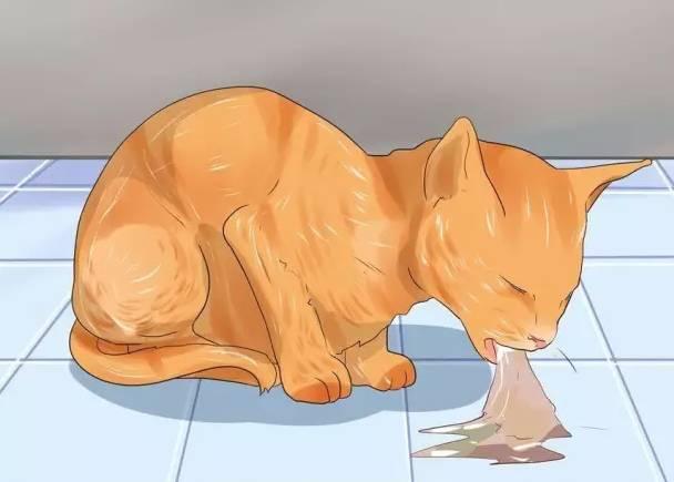 猫肚子里有虫子的表现