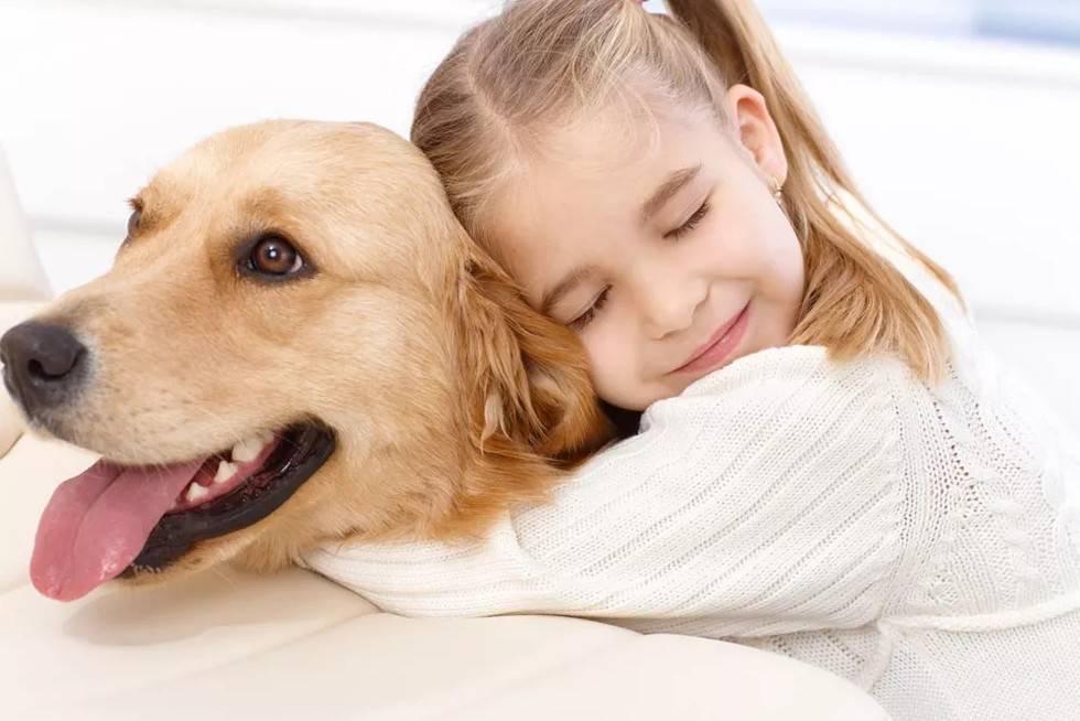 给狗狗取什么名字好,有趣的宠物狗名字,回头率百分之九十!