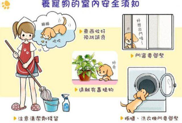狗狗乖乖在家中也可能发生危险